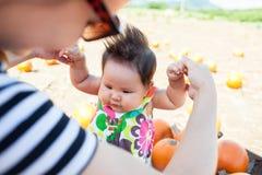 Mutter und Kind, die einen Kürbis am lokalen Kürbisflecken für die Feiertage wählen Stockfotos