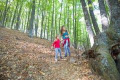 Mutter und Kind, die in Wald von Kastanienbäumen im Herbst gehen Stockfoto