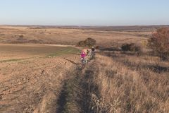 Mutter und Kinder auf ihren Fahrrädern gehen den Hügel hinauf lizenzfreies stockfoto