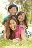 Mutter und Kinder, die Tag im Park genießen Lizenzfreie Stockfotos