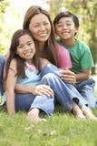 Mutter und Kinder, die Tag im Park genießen Stockfotografie