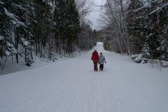 Mutter und Sohn, die auf schneebedeckte Straße im Gebirgswald gehen lizenzfreie stockbilder