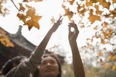 Mutter und Sohn, die für ein Blatt auf einer Niederlassung im Herbst erreichen Stockfotografie