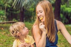 Mutter und Sohn hatten ein Picknick im Park Essen Sie gesunde Früchte - Mango, Ananas und Melone Kinder essen gesundes Lebensmitt Stockfotografie