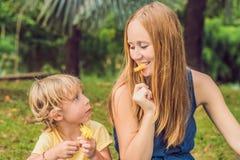 Mutter und Sohn hatten ein Picknick im Park Essen Sie gesunde Früchte - Mango, Ananas und Melone Kinder essen gesundes Lebensmitt Lizenzfreies Stockfoto