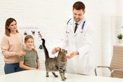 Mutter und Sohn mit ihrem Haustierbesuchstierarzt Untersuchungskatze Doc. stockfotos