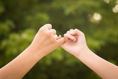 Mutter und Tochter, die ein Versprechen des kleinen Fingers machen Lizenzfreie Stockbilder