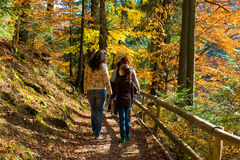 Mutter und Tochter, die im Wald stillstehen Stockfoto