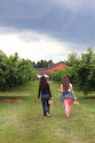 Mutter-und Tochter-Sammeln-Kirschen Lizenzfreie Stockfotos
