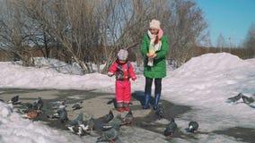 Mutter und Tochter zieht Tauben im Vorfrühling ein stock video