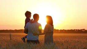 Mutter-, Vati- und Babyumarmung und sich küssen stehend auf einem Weizengebiet bei Sonnenuntergang Das Konzept einer glücklichen  stock video