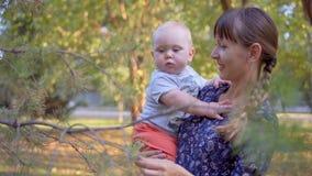Mutter zeigt Sohntannenbaum Sie berühren die Niederlassungen stock video