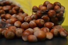 muttern är en oljig och näringsrik mat royaltyfria foton