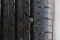 Muttern på gummihjulet royaltyfri foto