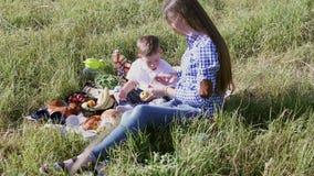 Muttersohn essen an einem Picknick im Wald 1 stock video
