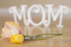 Muttertagbuchstaben mit Blumen und den Blumenblättern lizenzfreie stockfotos