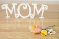 Muttertagbuchstaben mit Blumen und den Blumenblättern Lizenzfreie Stockbilder