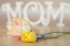 Muttertagbuchstaben mit Blumen und den Blumenblättern Stockfotos