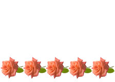 Muttertagesrosekartenhintergrund Stockbild
