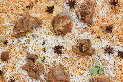 Mutton Gosht Biryani Royalty Free Stock Photography