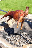 Mutton on hot glow royalty free stock photography