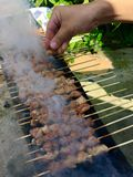 Mutton shashlik with smokes Royalty Free Stock Photography