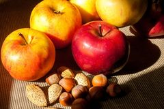 Muttrar och äpplen i bakgrunden Hasselnötter och mandelar Royaltyfri Bild