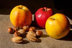 Muttrar och äpplen i bakgrunden Hasselnötter och mandelar Royaltyfri Fotografi