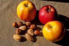 Muttrar och äpplen i bakgrunden Hasselnötter och mandelar Arkivbild
