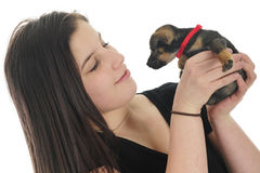 Mutual Admiration of Pup and Teen. A pretty teen girl admiring her tiny pup, while he eyes her back.  Focus on girl.  On a white background Royalty Free Stock Photo