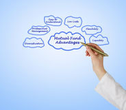 Mutual Fund Advantages Royalty Free Stock Photo
