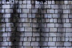 muur Royalty-vrije Stock Foto's