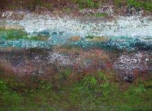 Muur die door mos wordt behandeld Stock Afbeelding