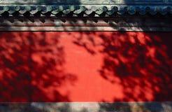 Muur en bomenschaduw Stock Fotografie