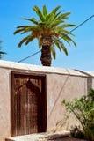 Muur en deur naast een palm in het midden van de zon in de tuinen van Menara Royalty-vrije Stock Foto