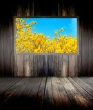 Muur en gele bloemen Stock Foto's