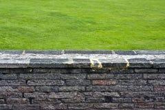 Muur en gras Royalty-vrije Stock Afbeelding