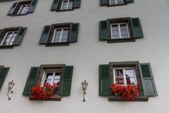 Muur met houten vensters en bloempotten Beilstein, Duitsland Royalty-vrije Stock Fotografie