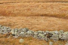 Muur met natuurstenen wordt opgebouwd om dieren in de weide te beschermen die Stock Foto's