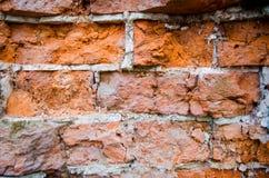 Muur met rode bakstenen Stock Fotografie