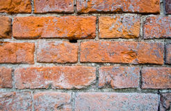 Muur met rode bakstenen Royalty-vrije Stock Afbeelding