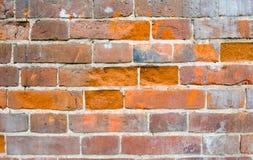Muur met rode bakstenen Royalty-vrije Stock Foto's