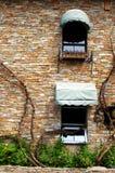 Muur met wijnstokken royalty-vrije stock afbeeldingen