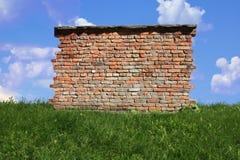 muur op het gras Royalty-vrije Stock Foto