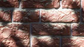 Muur overzeese shell geweven hdlengte stock footage