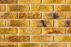 Muur van bakstenen wordt gemaakt die. Stock Afbeeldingen