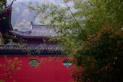 Muur van Boeddhistische Tempel Royalty-vrije Stock Foto's