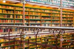 Muur van boeken Royalty-vrije Stock Foto