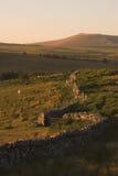 Muur van de landbouwgebied met inbegrip van paard Royalty-vrije Stock Afbeeldingen