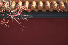 Muur van de Tempel van Confucius Royalty-vrije Stock Afbeelding